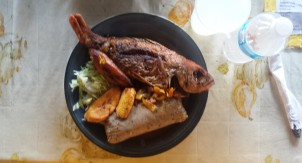 Kriyoyo lunch at 'Plasa Bieu' Red snapper, plantain and tutu (mix of cornflour, red beans and black eyed peas)